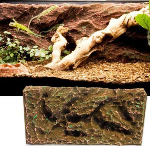 Vivarium Background Pet Supplies Ebay