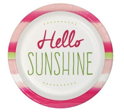 e LARGE PAPER PLATES (8) ~ Birthday Party Supplies Dinner (Sunshine Party Supplies)