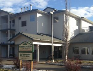 2 Bdrm Senior Low Income Supportive Housing Available