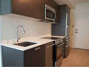 Luxury one bedroom condominium unit #1002 at 1 Thousand Bay