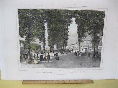 Vintage Print,JARDIN DES PLANTES,19th - Jardin Vintage Print