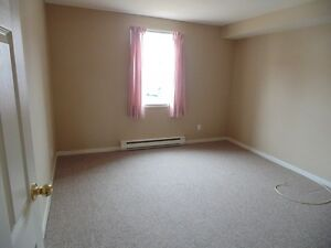 Lovely, spacious apartment in a Senior Friendly building! St. John's Newfoundland image 4