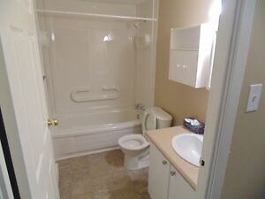 Lovely, spacious apartment in a Senior Friendly building! St. John's Newfoundland image 5