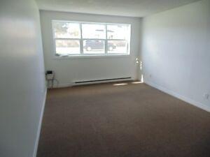 2 Bedroom apartment near CNA GFW!