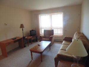 Furnished 2 Bedroom in Grand Falls! UTILITIES INCLUDED!