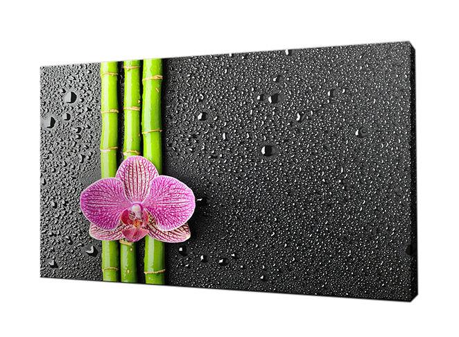 dekotipps machen sie ihr bad zur zen oase ebay. Black Bedroom Furniture Sets. Home Design Ideas