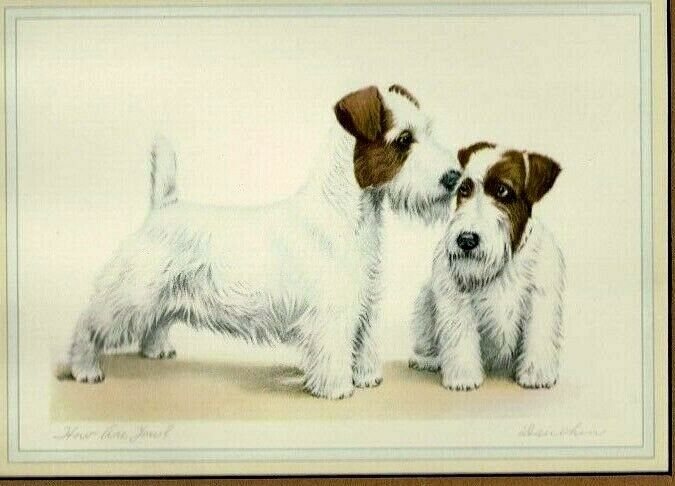 """Original Vintage Color Print Sealyham Terriers """"How Are You?"""" by Leon Danchin"""