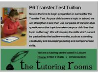Transfer Test Tutoring in Lisburn /Primary Maths & English tutoring from P3 / Reading/SEN support
