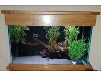 SOLD: Oak Aquarium