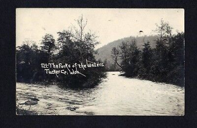 1910 WV RPPC AT THE FORKS OF RIVER WATERS TUCKER COUNTY WV REAL PHOTO POSTCARD