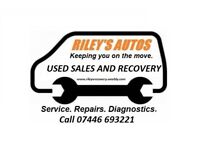 Riley's Recovery - Luton