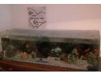 4ft aquarium for sale