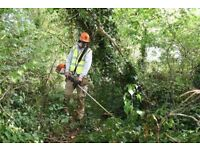 Garden Clearance Services Throughout Oxfordshire