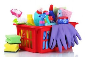 Reliable Regular House Cleanings