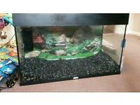 2ft 120l fish tank