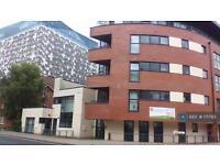 1 bedroom flat in Granville Street, Birmingham, B1 (1 bed)