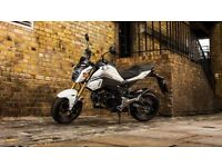 MSX 125 Honda Grom Extremely well preserved!70 careful and slow miles.Wax protection.ABS!