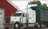 Professional Class One Driver Required