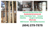 ☎☎ Licensed Plumber Gas Fitter-30 yrs exp-FREE Quote Top Quality