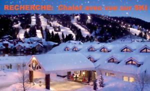 RECHERCHE CHALET A LOUER avec vue sur mont de ski pour mars