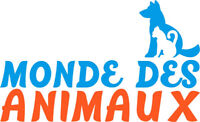 Groomer wanted/ Toiletteur voulait