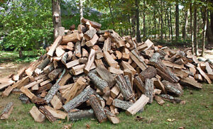 Dry hardwood firewood (firewood logs also available)