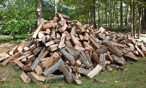 Dry Quality Hardwood Firewood (firewood logs also available) Peterborough Peterborough Area image 1