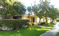 Several Palm Springs Properties for November 1st - April 30th