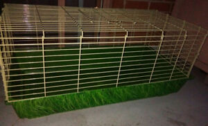 Rabbit Cage For Sale!