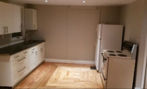 Newly Renovated 2 Bedroom Incl. Close to Queens and St.Lawrence
