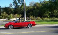 Custom Hotrod mint: 1984  GT Chev/Ford Convertable.