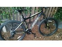 New carrera bike