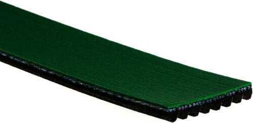 ACDelco K120895HD Specialty Heavy Duty V-Ribbed Serpentine Belt