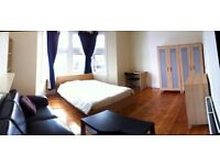 huge double room to rent old kent road,elepant and castle,2 bathrooms,cleaner,terrace,close to city