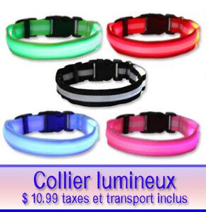 Collier lumineux LED pour chien et chat  et médaille inclut
