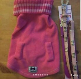Pink puppy coat. Lead. Collar