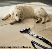 ►► CARPET CLEANING - Professional and Affordable◄◄