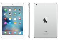 Ipad Mini 2 16GB WI+FI + 4G Cellular Silver & White