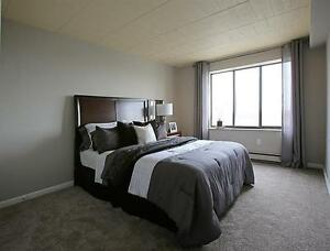 Large Apartment - Bright - Downtown - call us today! Windsor Region Ontario image 3