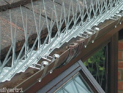 BIRD & PIGEON GUTTER ATTACHING EXTRA WIDE SPIKES 6 METRE PACK - anti roosting