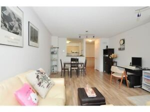 SHARED TOWNHOUSE FEMALE ONLY KENNEDY/STEELES