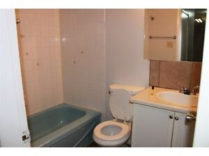 1 bedroom apartment in a clean apartment building