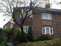 Large semi-detached 5-bed house located within easy walking distance of Sheffield University.