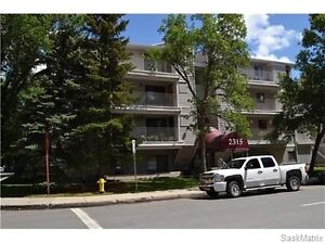 downtown 2 bedroom condo fully furnished - available Nov 1st Regina Regina Area image 2