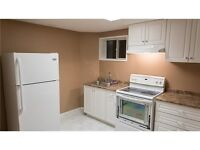 Beautifully Renovated  Basement Apartment in Newmarket