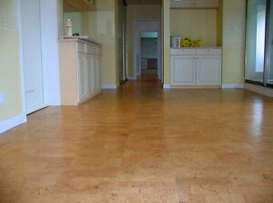 We Have the Best Cork Flooring for Basements