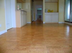 Say Goodbye to Smelly Basements with Cork Flooring