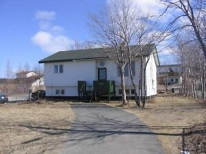 255A CBS Highway – Recently Renovated 2 Bdrm in Conception Bay