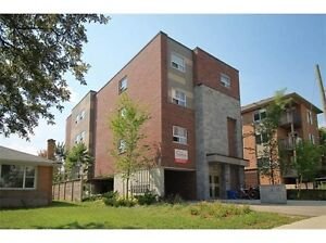 345 Spruce Street - 2 Rooms Available Kitchener / Waterloo Kitchener Area image 1