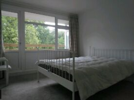 Spacious Double Room to Rent in Shared Flat at Epsom Road, Guildford.